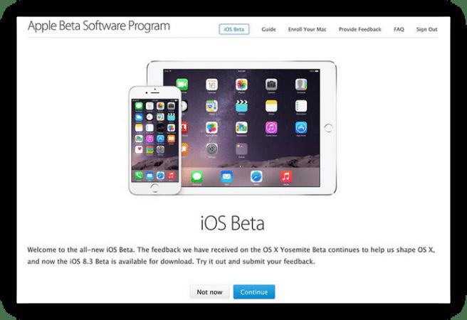 Instalar iOS beta en iPad foto 2