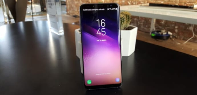 s8 frontal