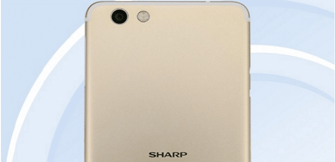 sharp phablet